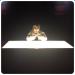 ベテラン声優・楠大典さんのツイート「いいね」ランキング!